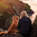 How to plan the ultimate dog-friendly staycation - 7 tips for taking your dog on holiday in the UK